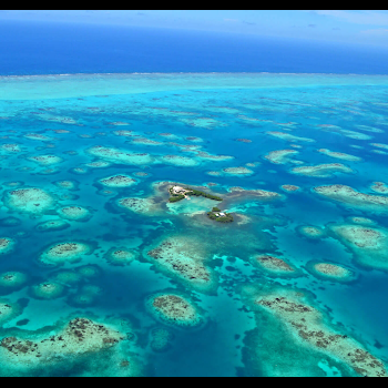 Photo of patch reefs in Belize